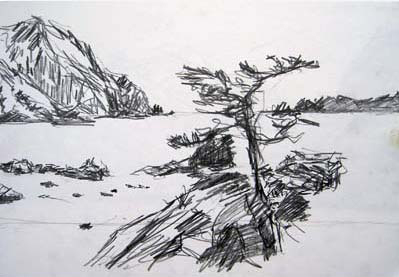 Sketch of a tree by the sea near Ushibuka, Japan