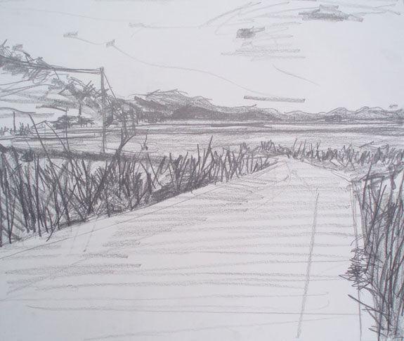 Sketch of fields near Kawaura